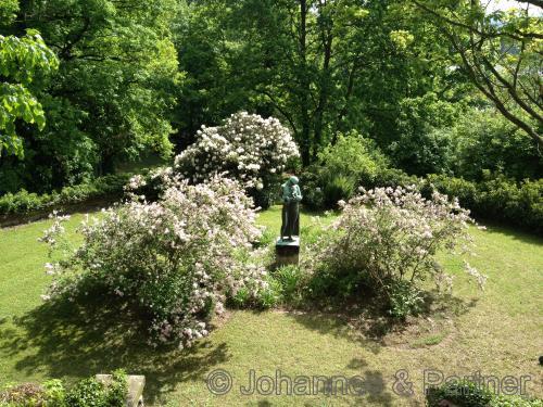 Blick aus dem Wintergarten in den hauseigenen Garten