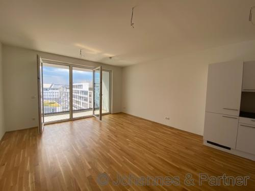 großes, helles Wohnzimmer mit offener Küche