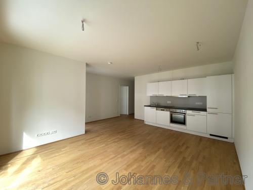 großes, helles Wohnzimmer mit offener Küche und Einbauküche