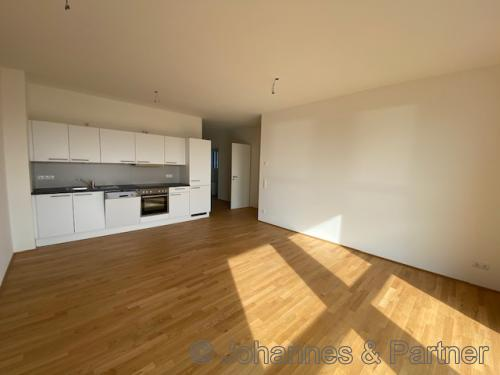 Wohnzimmer bit offener Küche und Einbauküche