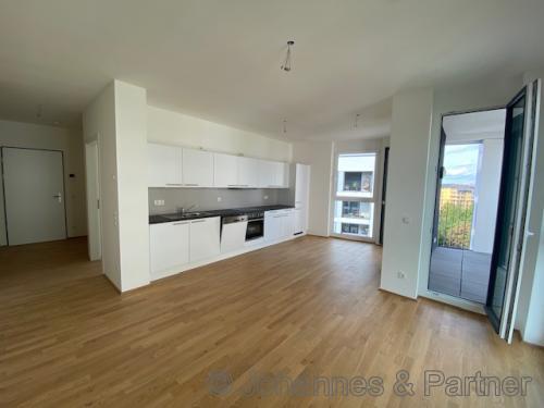 großes, helles Wohnzimmer mit offener Küche und EBK