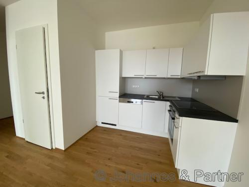 Wohn- Essbereich mit Einbauküche